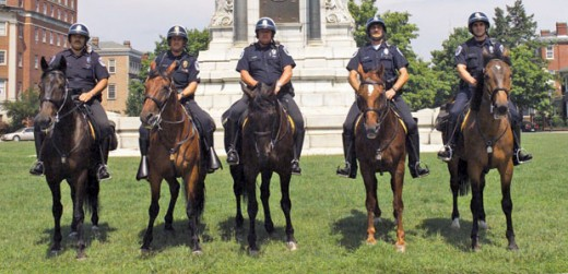 Richmond Police horses